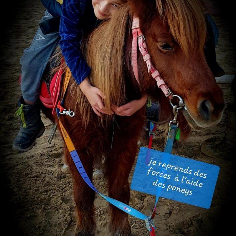 Thérapie Equestre CAD